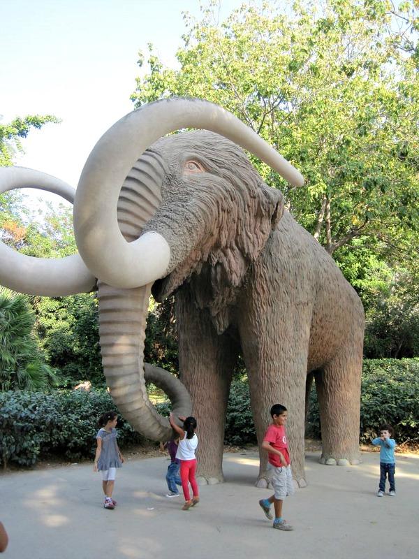 Scendi anche tu in strada con il Mammut Tantissimi bambini di Scampia lo fanno ogni giorno - Fondazione Angelo Affinita